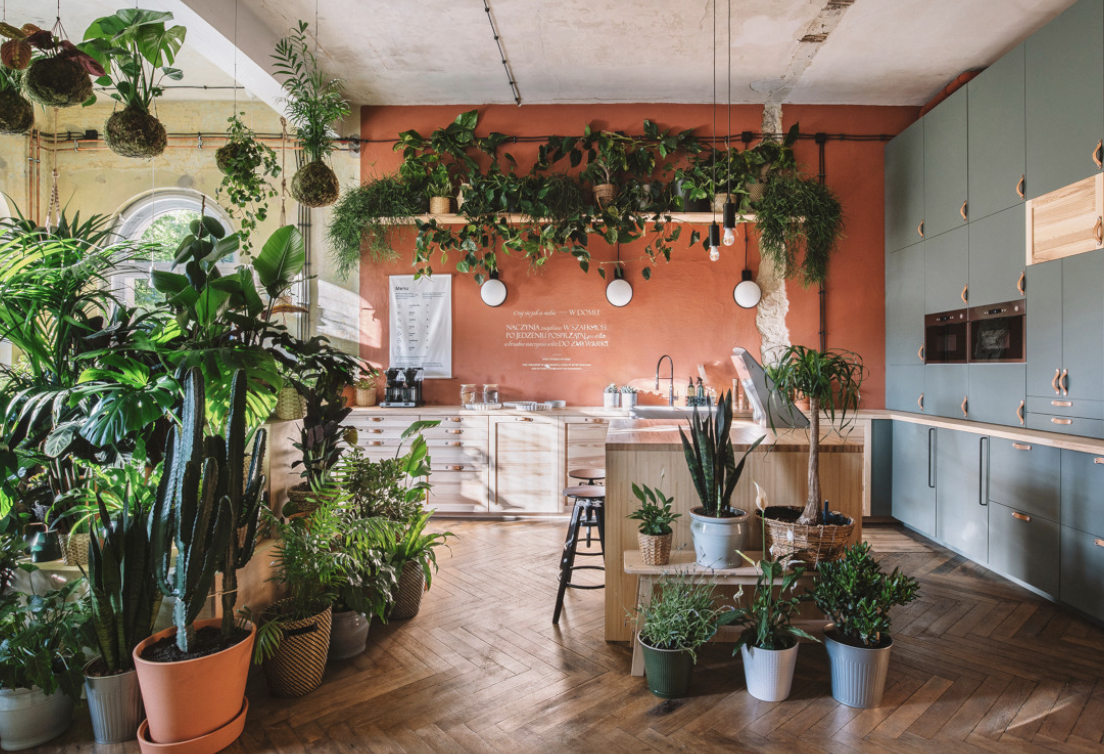 Engaging Eco-led Stores