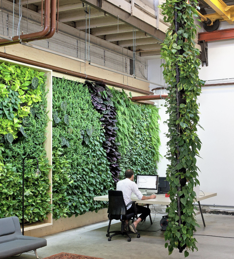 Sustainable Retail: Key Considerations for Environmental Design